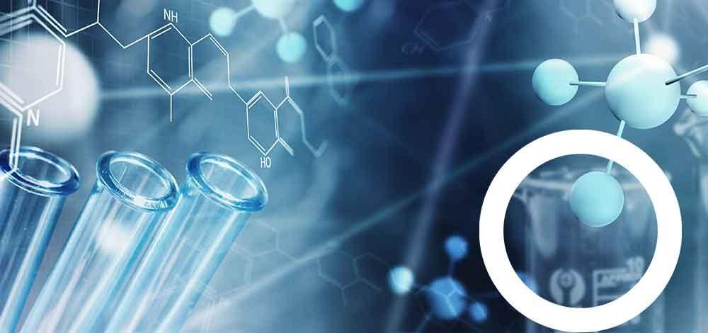 AFSSI Connexions, les rencontres annuelles de la recherche préclinique